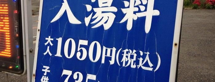筑波山温泉 つくば湯 is one of Ibaraki (tentative).