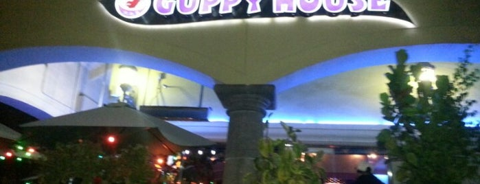 Guppy House is one of x LA! x.