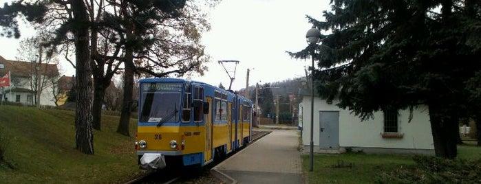Bahnhof Waltershausen is one of Thüringerwaldbahn.