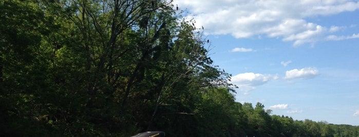 Lake Nockamixon Loop is one of Best Hikes in Pennsylvania.