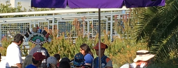 Tomorrowland Churro Cart is one of Disneyland Fun!!!.