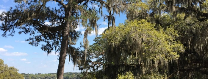 Maclay Gardens Park is one of Fun Activities in Tallahassee.