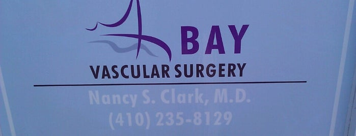 Bay Vascular Surgery is one of Work.
