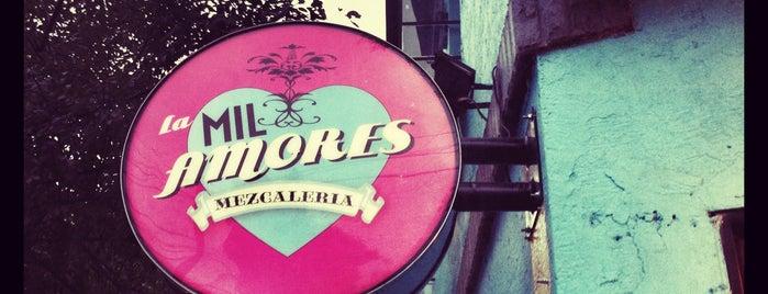 La Mil Amores Mezcalería is one of bars.