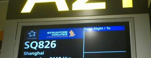 Gate A21 is one of SIN Airport Gates.