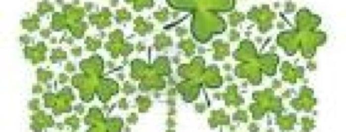 Happy St. Patrick's Day is one of Listpocalypse.