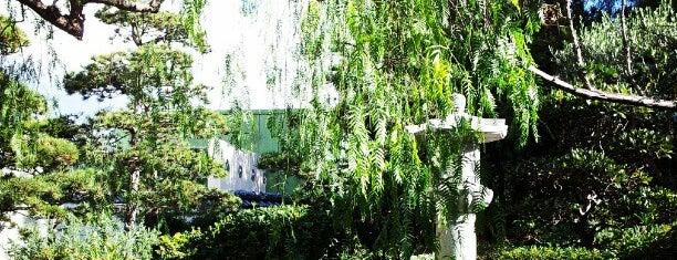 Monaco for Jardin japonais monaco