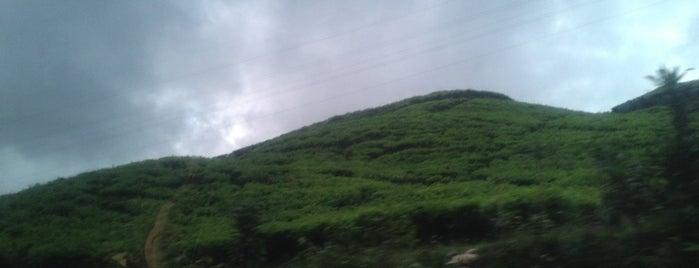 Puncak Pass is one of jihan.