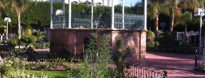 Lugares recoridos for Jardin principal