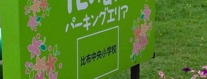 比布大雪PA (下り/士別剣淵方面) is one of 道央自動車道.