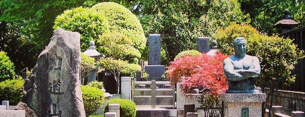 力道山のお墓 is one of 歴史(明治~).