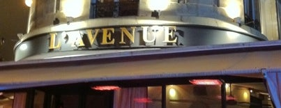 L'Avenue is one of Best places in Paris, France.