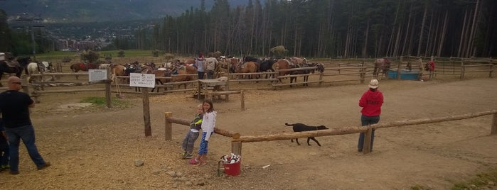 Breckenridge Stables is one of Colorado Tourism.