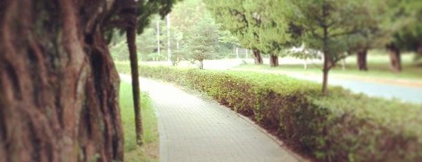 Kyushu Univ. Chikushi Campus is one of 九大.