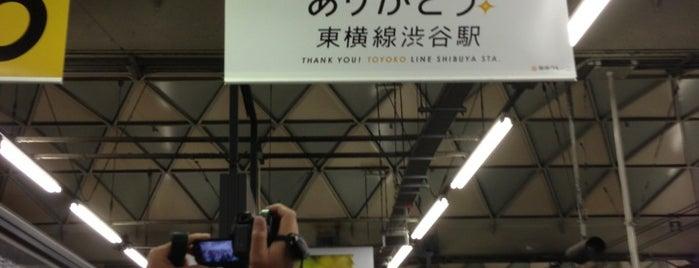 Toyoko Line Shibuya Station (TY01) is one of Station.