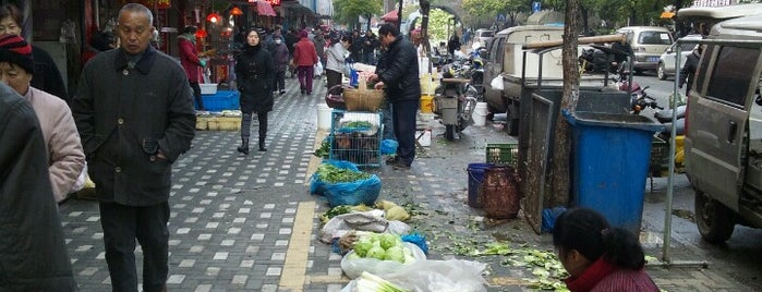 Pengpu Xinxun Metro Stn. is one of Metro Shanghai.