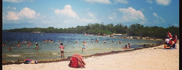 John Pennekamp Coral Reef State Park is one of Want to visit.