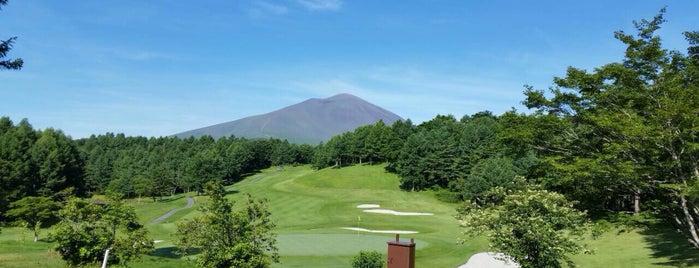 太平洋クラブ 軽井沢リゾート is one of Top picks for Golf Courses.