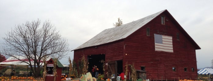 Hurd's Family Farm is one of Things to do in the New Paltz area.