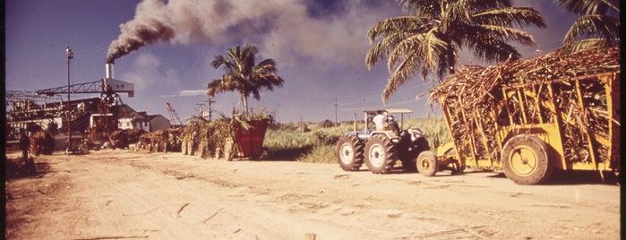 Mayagüez, PR is one of Documerica.