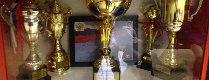 Филиал Академии ФК Зенит (Зенит-Всеволожск) is one of Основной состав.