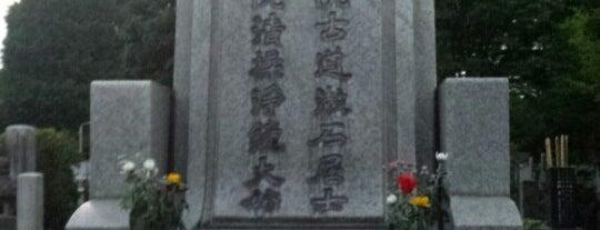 夏目漱石の墓 is one of 歴史(明治~).