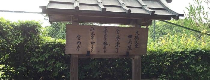 文徳天皇 田邑陵 (太秦三尾古墳) is one of 天皇陵.