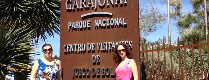 Islas canarias la gomera for Oficina fred olsen santa catalina