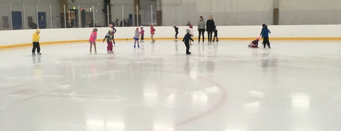 Myllypuron jäähalli is one of Junior icehockey arenas.