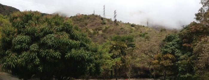 Parque Recreacional La Aguada is one of Plazas, Parques, Zoologicos Y Algo Mas.