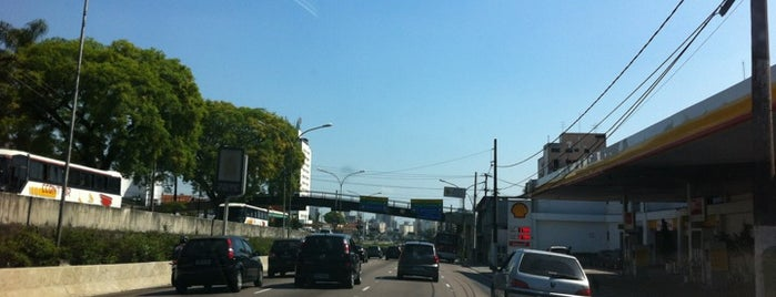 Avenida Moreira Guimarães is one of Principais Avenidas de São Paulo.