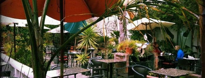 Café Leila is one of Berkeley Dog Friendly Favorites.