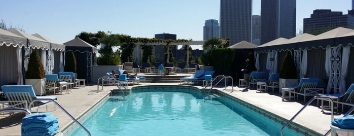 The Roof Garden is one of Best Rooftop Bars in Los Angeles.