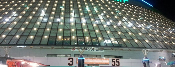 Tokyo Dome is one of Japan Triple Play.