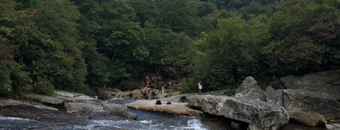 Graveyard Fields is one of Cool spots to visit with kiddos.