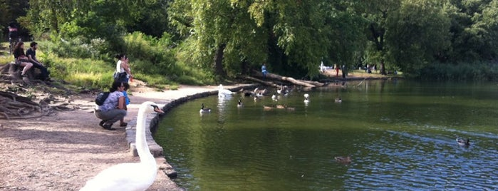 Prospect Park Lake is one of NY Greater Outdoor & Swimies.