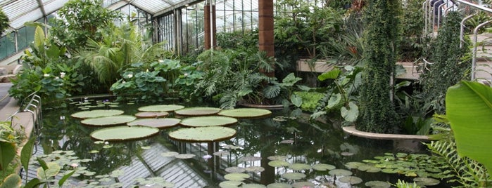 Princess of Wales Conservatory is one of Must-visit Great Outdoors in London.