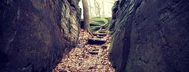 Gorge Metro Park is one of Places to go in Cuyahoga Falls.