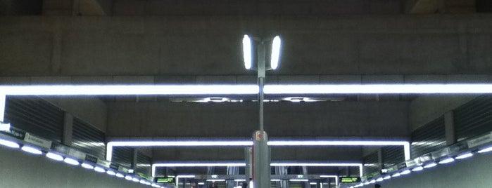 II. János Pál pápa tér (M4) is one of Budapesti metrómegállók.
