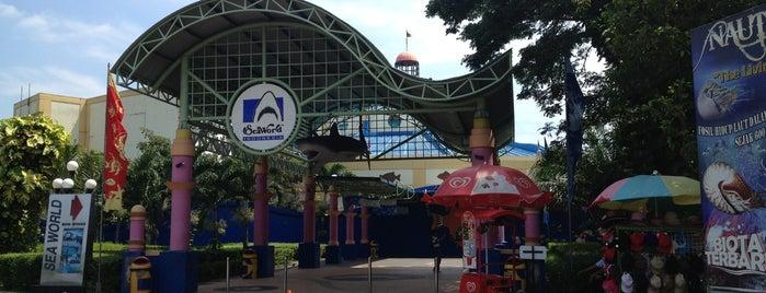 SeaWorld Indonesia is one of Enjoy Jakarta 2012 #4sqCities.