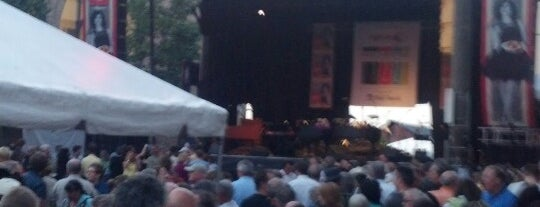 Rochester International Jazz Festival is one of Guide to Rochester's best spots.