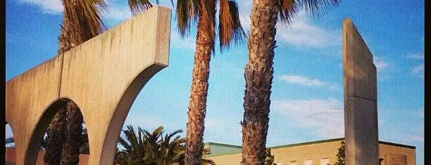 Club Social 1 is one of los mejores sitios para comer en Alicante.