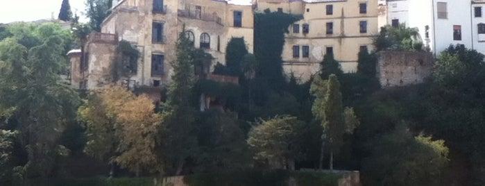 Casa del Rey Moro is one of 101 cosas que ver en Andalucía antes de morir.
