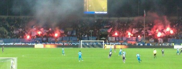 Стадион «Петровский» is one of Stadiums.