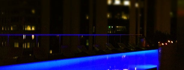 The Standard, Downtown LA is one of Incredible Pools.