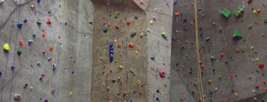 Vertical Endeavors Rock Climbing is one of Best Spots in Minneapolis, MN!.