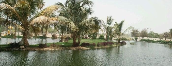 بحيرة ينبع الصناعية | Yanbu Industrial City Lake is one of Yanbu.