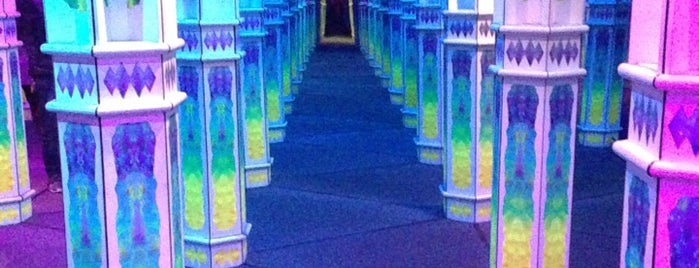 Magowan's Infinite Mirror Maze is one of SF.