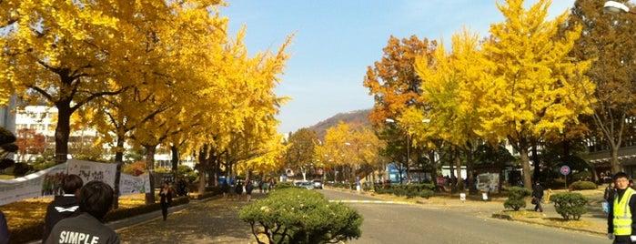 Yonsei University Quad is one of 연세대학교, Yonsei Univ..