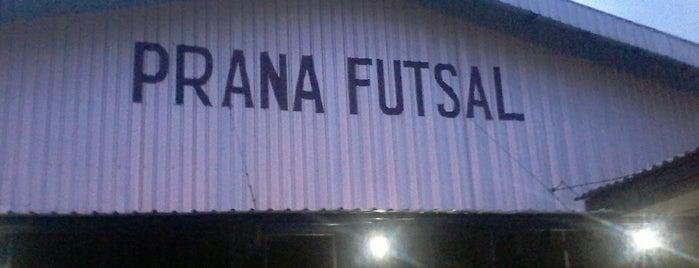 Prana Futsal 1 is one of Lapangan Futsal.
